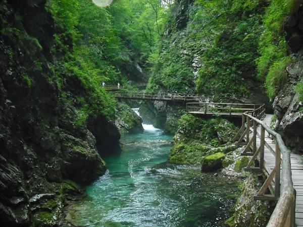 http://www.viaggiareibalcani.it/uploaded/articoli-turismo-responsabile/slovenia/Diario%20di%20viaggio/slovenia_gole%20di%20vintgar%20(Bled)_Claudio%20Simbolotti_no%20fini%20comm.JPG