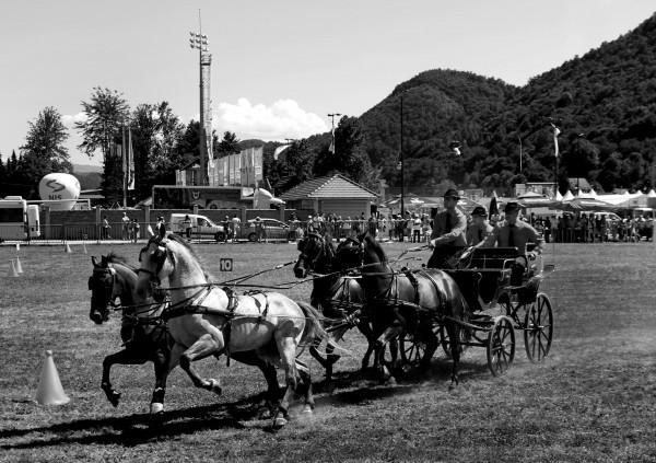 Guča trumpet festival
