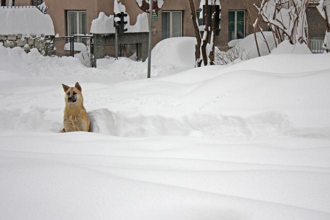 La neve a Sarajevo