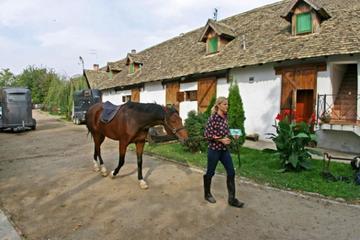 Serbia, la via dei Salaš