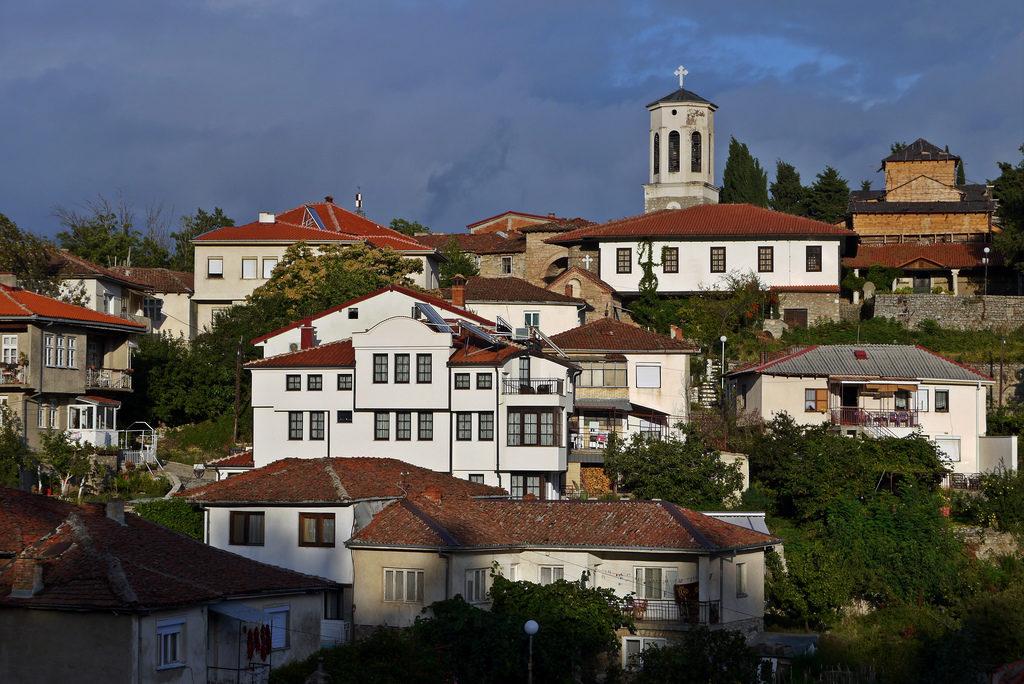 (Quasi) un necrologio: il vecchio platano di Ohrid.