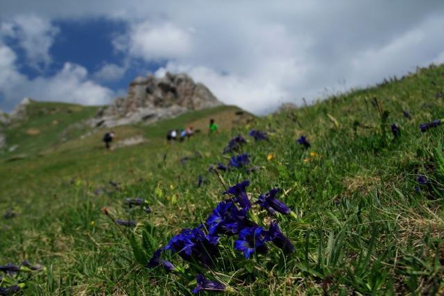 """Peaks of the Balkans: per un turismo virtuoso e """"vincente""""."""