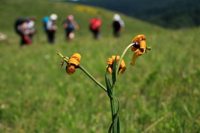 Trekking Peaks of the Balkans: Kosovo-Montenegro-Albania, , dal 1 al 8 agosto 2015